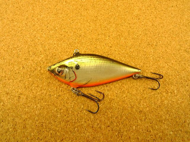 Catter Shad CS3 TS