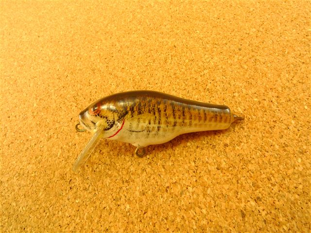 Small Fry Bass Old 1SF1 SM4
