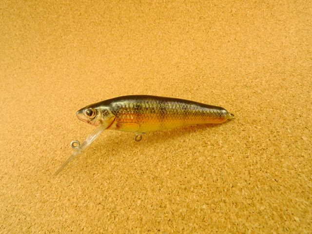Small Fry Perch 6DF3