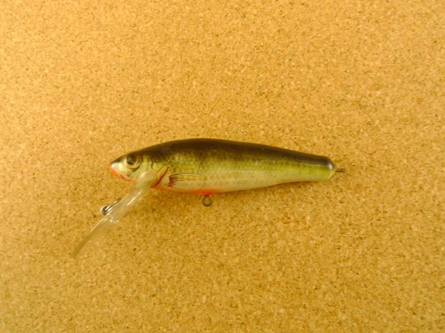 Small Fry Perch 6DF3 P4