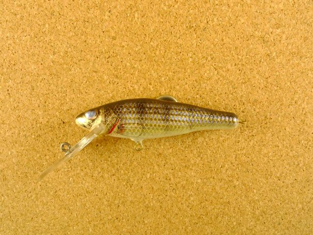Small Fry Perch 6DF3 W4