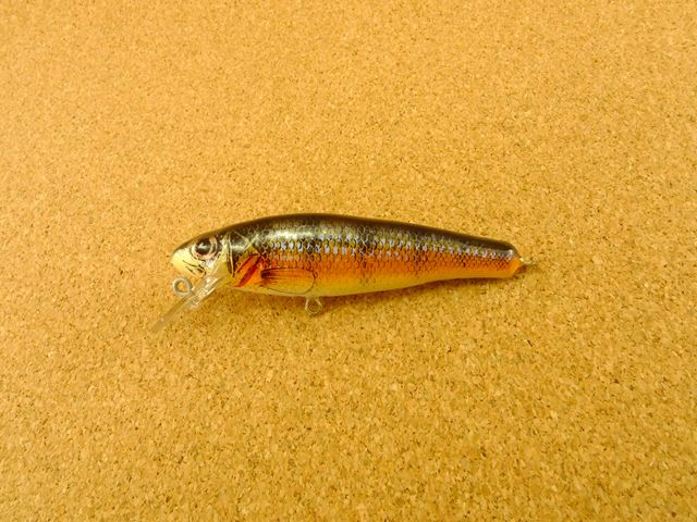 Small Fry Perch 6F3