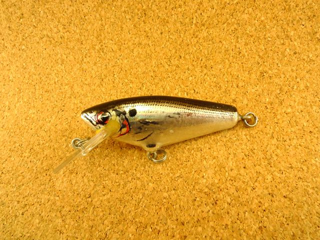 Small Fry Shad 4DSF2 FBS