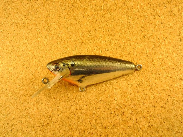 Small Fry Shad 4DSF2 FTS