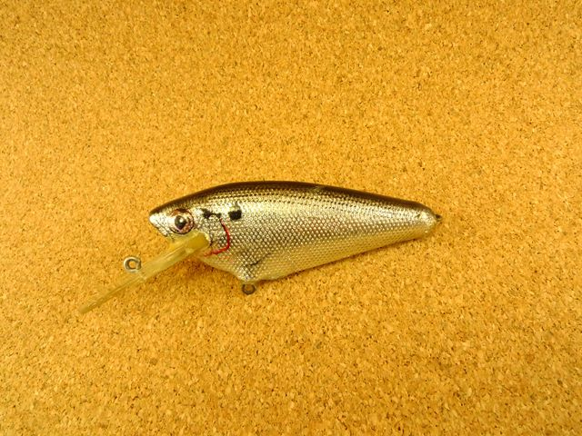 Small Fry Shad 4DSF3 BS