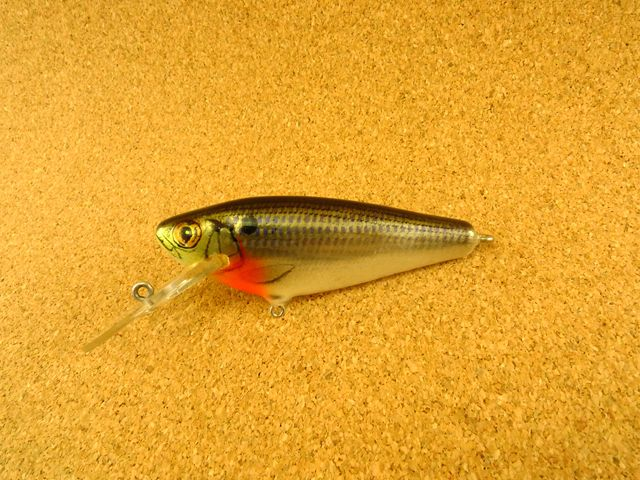 Small Fry Shad 4DSF3 CS4