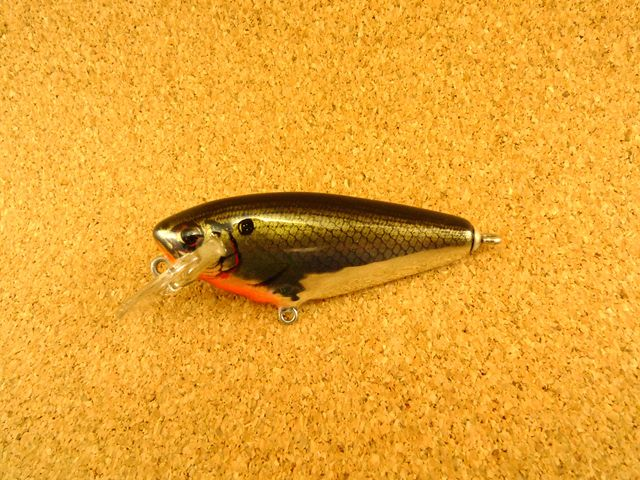 Small Fry Shad 4SF2 FTS