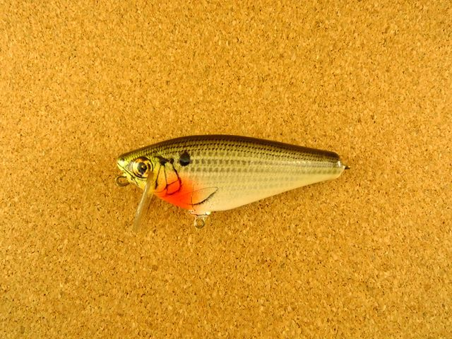 Small Fry Shad 4SF3 CS4