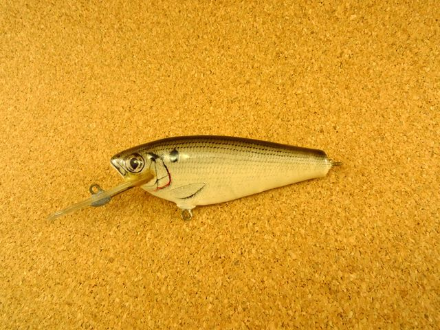 Small Fry Shad Old 4DSF3 SH4