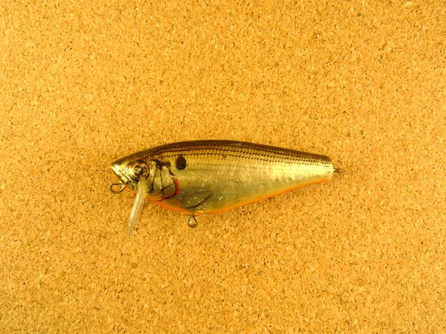 Small Fry Shad Old 4SF3 FBG